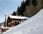Ferienhaus P619