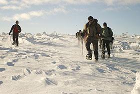 Schneeschuhwandern in Idre / Schweden